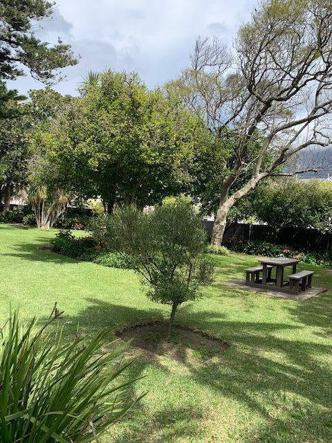 Property For Rent in Rondebosch, Cape Town 16