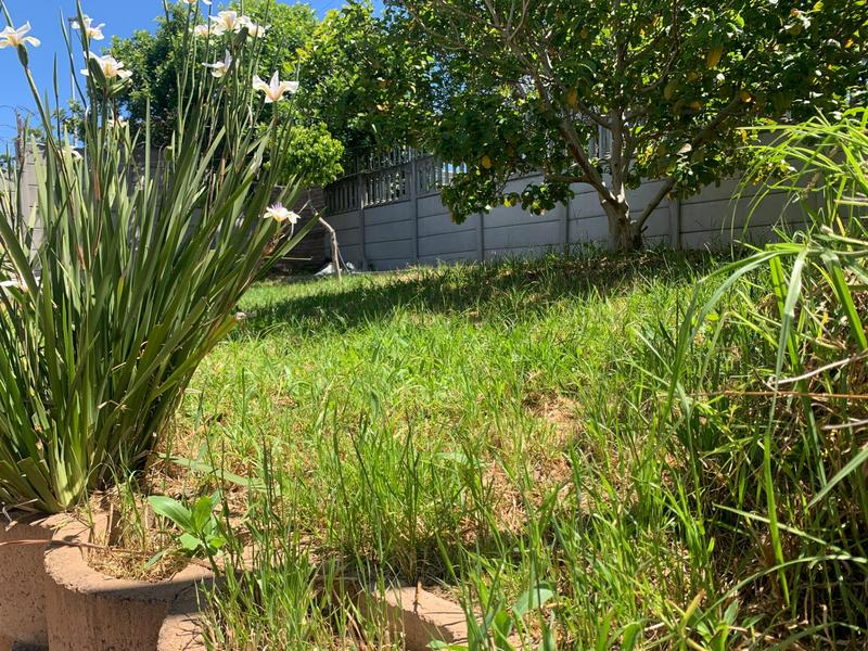 Property For Rent in Mowbray, Cape Town 7